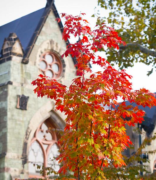 Autumn at Penn